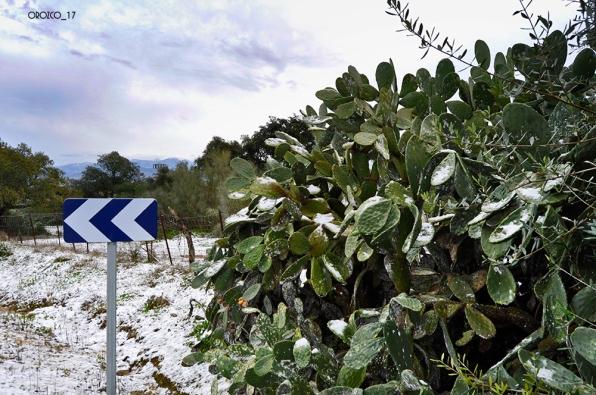 nevada-en-arcos-enero-2017-11