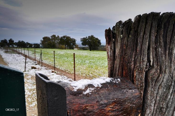 nevada-en-arcos-enero-2017-5