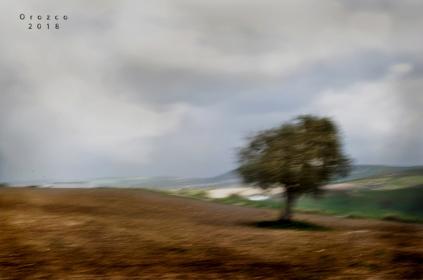 2018 03 10 paisaje (1)